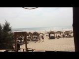 Моржим пляж Гоа (март 2014)